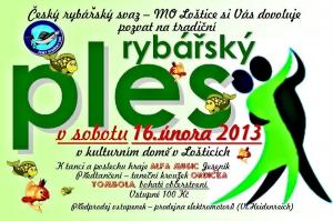 Ples 2013
